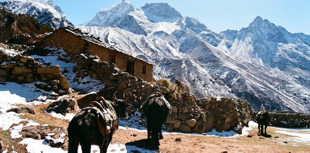 Everest Cho La Trek