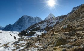 everest base camp weather in autumn