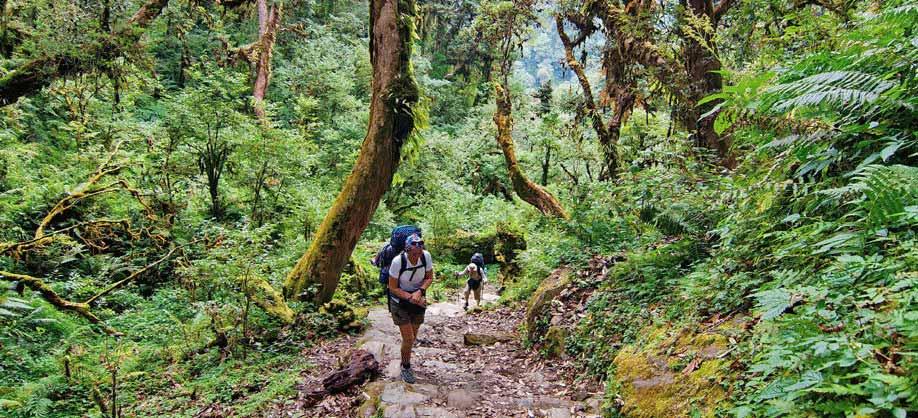 Chisapani Hike _ Best Hikes near Kathmandu